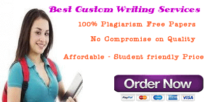 custom literature review writers website usa
